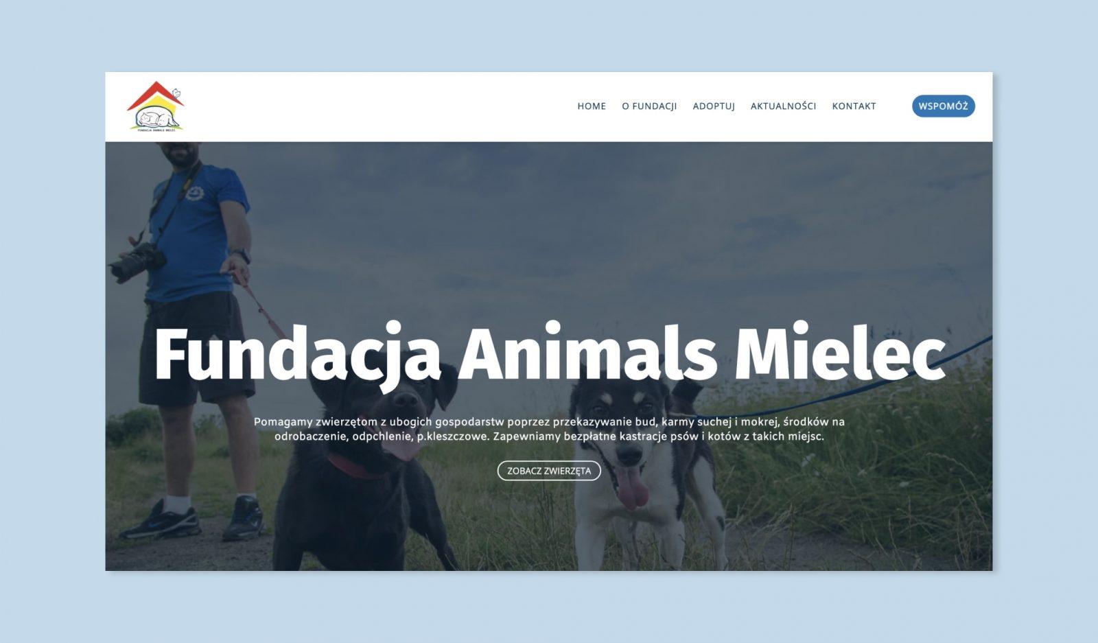 fundacja animal mielec case study thumbnail-min